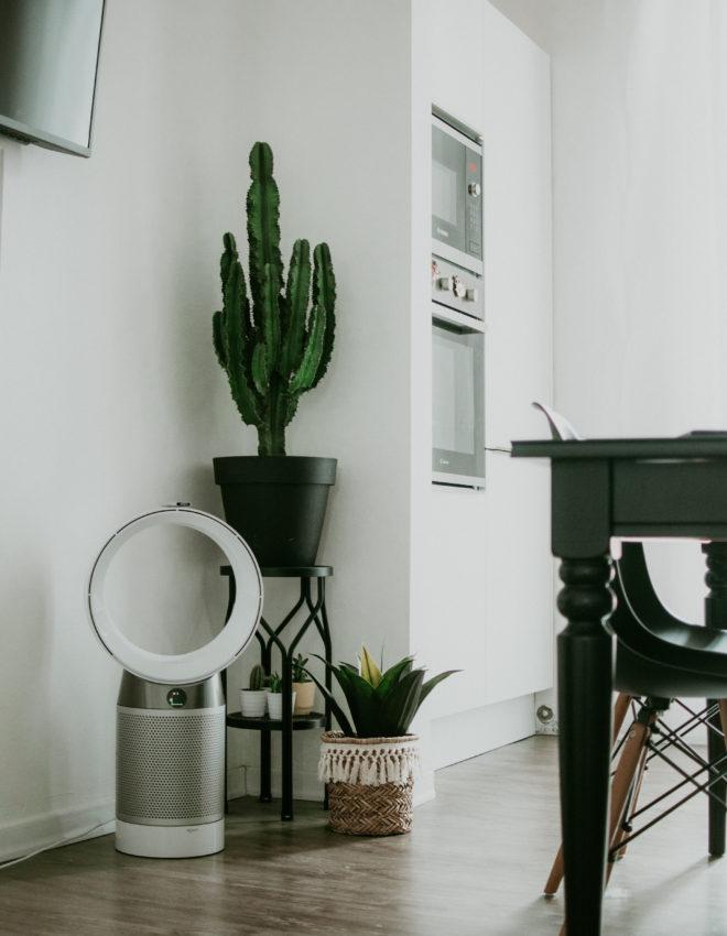 Dyson Pure Cool per un'aria pulita e addio allergia